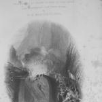 Fig. 8. William Henry Bartlett, frontespizio (William Beattie, «Switzerland», G. Virtue, London 1836).