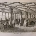 """Fig. 04 – Interno dell'acquario marino dell'Esposizione universale di Parigi del 1867 (tratto da: """"L'Esposizione universale del 1867 illustrata"""", Sonzogno, Milano 1867, p. 561)"""
