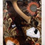 Fig. 09 – Diorama di colorate anemoni. Tavola III (tratto da: P. H. Gosse, Actinologia Britannica: A History of the British Sea-Anemones and Corals, Van Voorst, London 1860, p. 106)