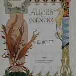 "Fig. 17 – Tavola n. 1 (tratta da: E. Belet, ""La végétation sous marine"", Armand Guérinet, Paris 1900)"